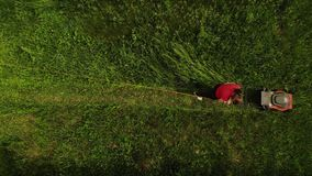 Aerial view lawn mower or grass cutter girl mows the grass top view stock video