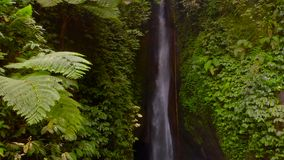 Aerial View of the Leke Leke waterfall in jungles of Bali, Indonesia. Drone moves backwards and camera tilts down stock footage