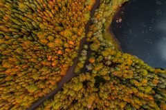 Aerial view from Liesjärvi National Park, Finland royalty free stock photography