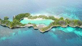 Aerial View of Limestone Island and Reef in Raja Ampat. A healthy coral reef fringes a beautiful, tropical island that surrounds a marine lake in Raja Ampat stock footage