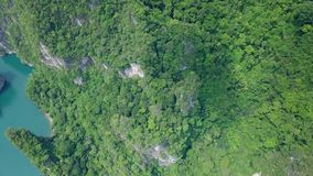 Aerial view of limestone rocks rising from water. Top view of mountains in Khao Sok National Park on Cheow Lan Lake. Thailand shot with a DJI Mavic fps29, 97 stock footage
