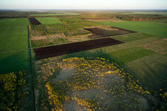 Aerial view of Lithuanian countryside at  spring Stock Photography