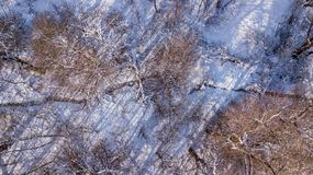 Aerial view of the little brook through a winter forest trees stock photography