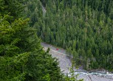 Aerial view of lone red car driving through a pine forest in Mount Rainier National Park, Washington state, USA. Aerial view of lone red car driving through a stock image
