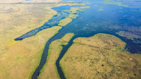 Aerial View of Louisiana Wetlands stock image