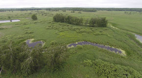 Aerial View of Wetlands. Low altitude aerial photo of a marsh with dotted with ponds and ditches Stock Photography