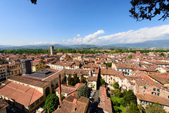 Aerial View of Lucca - Tuscany Italy Stock Images