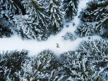 Aerial view of the lying man in winter forest. In mountains royalty free stock photos