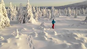 Aerial view of man walking with snowshoes on white snow in winter. Europe mountains. 4K stock video footage