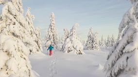 Aerial view of man walking with snowshoes on white snow in winter. stock video
