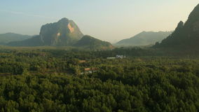 Aerial View. Mangrove forest in Krabi province, Thailand stock footage