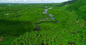 Aerial view of mangrove forest and river on the Siargao island. Philippines.  stock image
