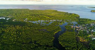 Aerial view of mangrove forest and river on the Siargao island. Philippines.  stock photo