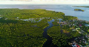 Aerial view of mangrove forest and river on the Siargao island. Philippines.  stock photos