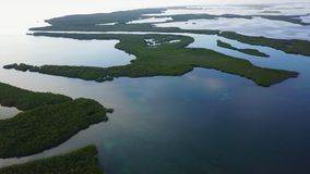 Aerial View of Mangrove Islands in Caribbean. Aerial view of mangrove islands and the calm lagoon inside Turneffe Atoll in Belize. The area supports a wide stock video footage