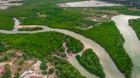 Aerial view of the mangrove swamp, dar es salaam. Aerial view of the mangrove swamp royalty free stock photography