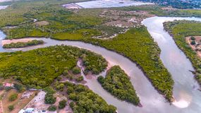Aerial view of the mangrove swamp, dar es salaam. Aerial view of the mangrove swamp royalty free stock image