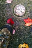 USGS Benchmark and hikers boot with autumn leaves. An aerial view of a metal benchmark emplaced in Adirondack bedrock with scattered autumn leaves and a wet Royalty Free Stock Images