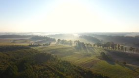 Misty countryside, top view stock video footage
