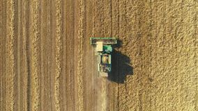 Aerial view of modern combine harvesting wheat on the field. Flying directly above combine. stock footage
