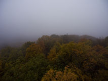 Aerial view. Morning fog over the forest. Royalty Free Stock Photography