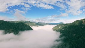 Aerial view of mountain landscape. Drone flying up above valley filled with fog