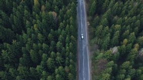 Aerial view of the mountain road. At sunrise stock footage