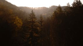 Aerial view of the mountain road. At sunrise stock video footage