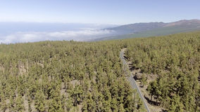 Aerial view of mountain road through trees Royalty Free Stock Images