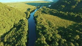 Aerial View. Mountain stream flows into the ocean. Mountain river flowing in the forest at sunset. Flying over the beautiful sunny forest trees. Aerial camera stock footage