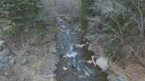 Mountain river rushing down with trees on both sides. Aerial view of a mountain stream or river rushing down between the forest trees.  No leaves on the trees as stock video footage