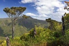 Aerial view of mountains. Mauritius Stock Photo