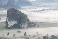 Aerial view of mountains and  trees in morning fog Royalty Free Stock Photography