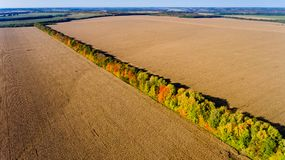 Aerial view of multi-colored autumn trees share plowed fields. stock image