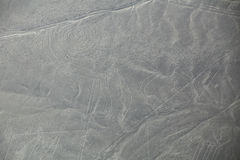 Aerial view of Nazca Lines - Monkey geoglyph, Peru. Royalty Free Stock Images