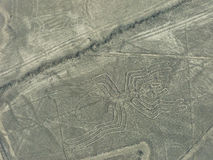 Aerial view of Nazca Lines - Spider geoglyph, Peru. Stock Photos
