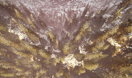 Aerial view of a north american forest at fall 3d rendering Stock Images