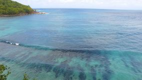 Aerial view of ocean and palms 1, Anse Takamaka Bay 3, Seychelles. Drone shot of Anse Takamaka Bay, Mahe Island, Seychelles stock video footage