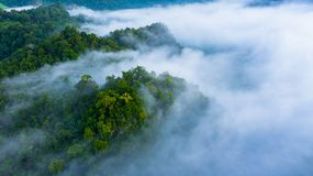 Free Aerial View Of Morning Mist At Tropical Rainforest Mountain, Background Of Forest And Mist, Aerial Top View Background Forest Stock Photos - 159613423