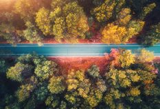 Free Aerial View Of Road In Beautiful Autumn Forest At Sunset Stock Image - 162043821