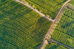 Free Aerial View Of Rural Road In Green Corn Field Stock Images - 137194914