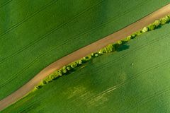 Free Aerial View Of Wheat Fields In Moravia Village Royalty Free Stock Photos - 118173608