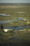 Aerial view, Okavango delta, Botswana. Stock Photography
