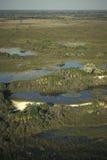Aerial view, Okavango delta, Botswana. Stock Photography