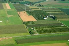Orchards From Above Royalty Free Stock Photos