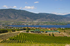 Aerial view of Osoyoos Wine Valley Royalty Free Stock Image
