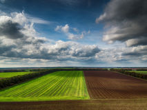 Aerial view over the agricultural fields Stock Image