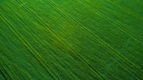 Aerial view over the agricultural fields Royalty Free Stock Image