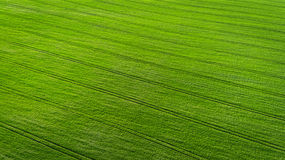 Aerial view over the agricultural fields Royalty Free Stock Photography