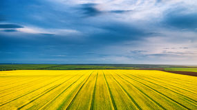 Aerial view over the agricultural fields Stock Images